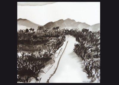 06 - Camino