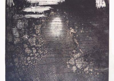 06 - Nedador